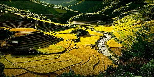 Best  Vietnam Travel Hanoi to Mu Cang Chai
