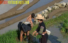 5day Sapa tour package From UK