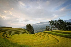 8day  Vietnam holiday tours from Malaysia
