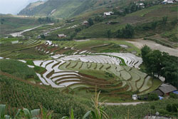 Sapa is one of the best  travel packages Vietnam from Hongkong
